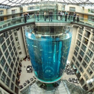 AquaDom. berlin. Le plus grand aquarium cylindrique du monde. 2003