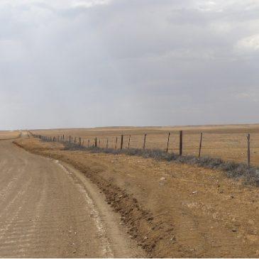 Dingo Barrier Fence. Australie. La plus longue clôture au monde. 1885